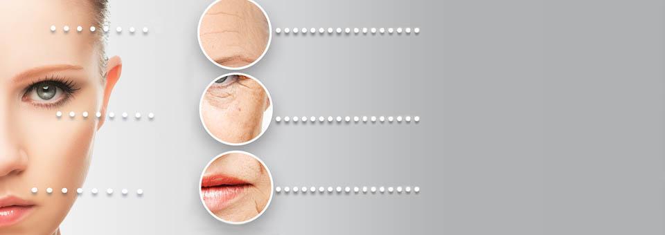 skin aging change