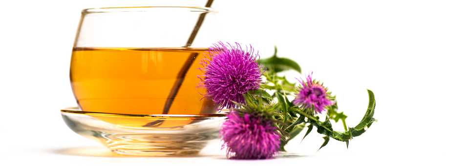milk-thistle-tea